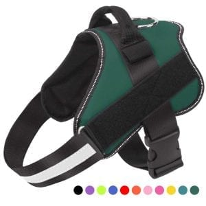 Bolux Dog Harnesses