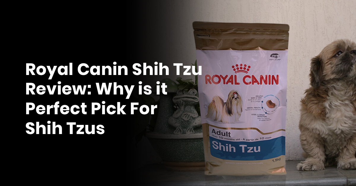 Royal Canin Shih Tzu Review Why Is It Perfect Pick For Shih Tzus